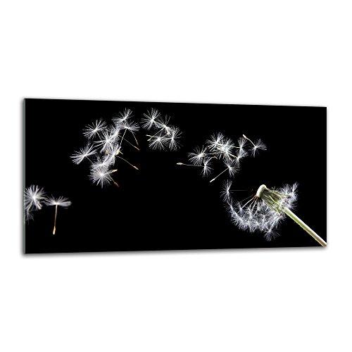 decorwelt Küchenrückwand Spritzschutz aus Glas 80x40 cm Wandschutz Herd Spüle Küchenspritzschutz Fliesenschutz Fliesenspiegel Küche Dekoglas Pusteblume Weiß-Schwarz