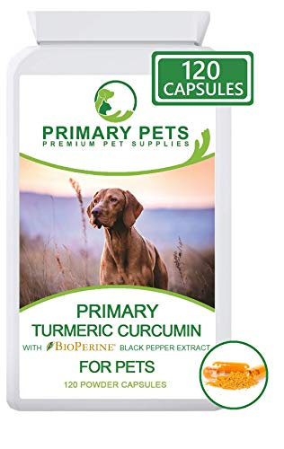 Primary Pets Kurkuma für Hunde. Gelenk- und Hüftpräparat und Antioxidans. 120 x 500 mg Curcuma Curcumin Kapseln. Entgleich 10000mg