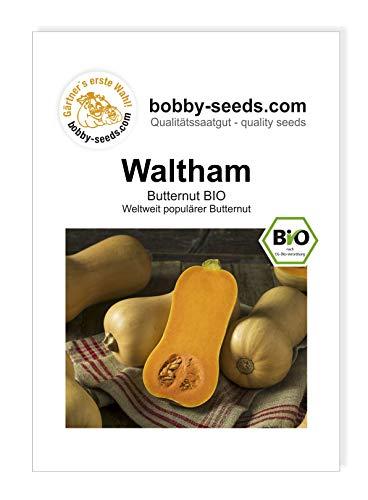 Bobby-Seeds BIO-Kürbissamen Butternut Waltham Portion