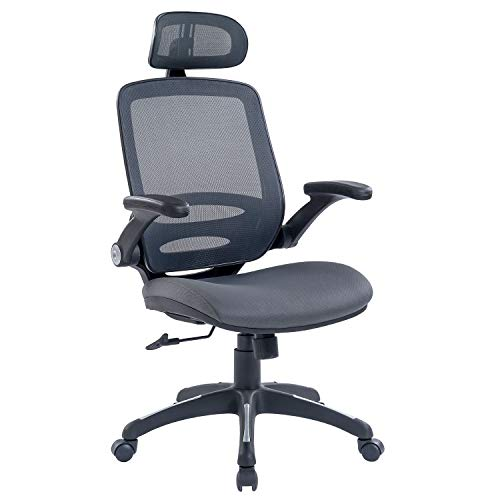 RYDESIGN Ergonomic Office Chair with Headrest and Flip-Up Arms, Dark Gray High-Back Ergonomic Chair, Comfortable Executive Mesh Chair for Office and Study