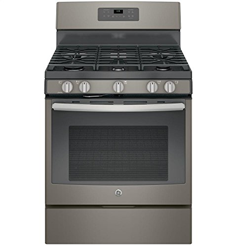 GE JGB660EEJES Sealed Burner Range