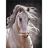 CDNY Animal caballo-5D Pintura Diamante Kit,-Cristal Diamante Bordado Pinturas Artes Kit-decoración de Pared del hogar40x50cm