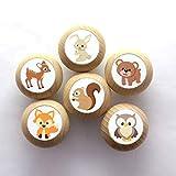 6er Set Möbelknöpfe mit Tiermotiven Buche natur Kinderzimmer Holz Waldtiere