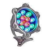 Led Piscina Sumergible Adecuado para Piscinas, Fuentes Cascadas Fiesta De Navidad Iluminación del Paisaje, AC24V, Resistente Al Agua hasta IP68 Focos Piscina (Color : Blue, Size : 12W)