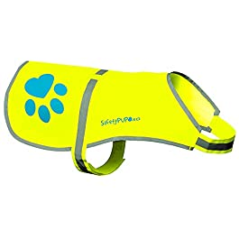 Dog Reflective Vest, Sizes to Fit Dogs 14 lbs to 130 lbs – SafetyPUP XD Hi Vis, Safety Vest Keeps Dogs Visible On and Off Leash in Both Urban and Rural Environments