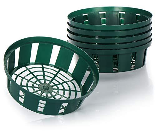 com-four® 6X Pflanzkörbe für Blumenzwiebeln, Anzucht-Pflanzschale zum Einpflanzen und Aufbewahren von Zwiebelpflanzen, Kleiner grüner Zwiebelkorb (06x Pflanzschale - 22cm)