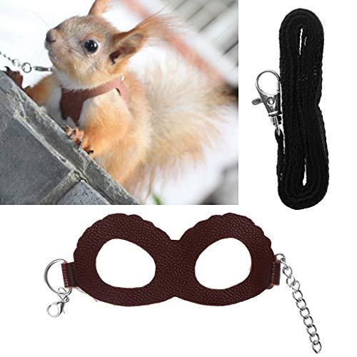 Biniwa – 1 arnés para Mascotas, hámster de cobaya, Entrenamiento para Mascotas, Correa de Piel Ajustable