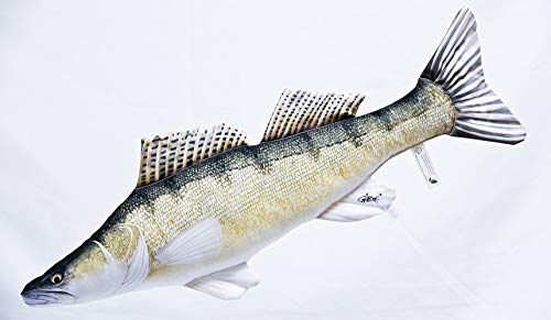 GABY Fish Pillows Zander Kissen, Mehrfarbig, Medium