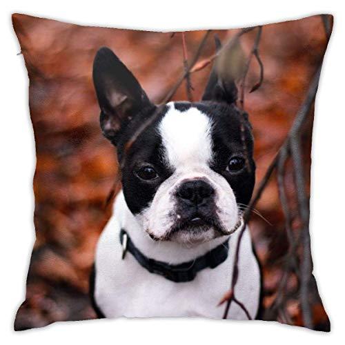 Fundas de Almohada, Fundas para Cojines de Lino Funda de Almohada Perro Bulldog Funda Cojin Decorativa de Casa para sofá Dormitorio Coche,45x45CM