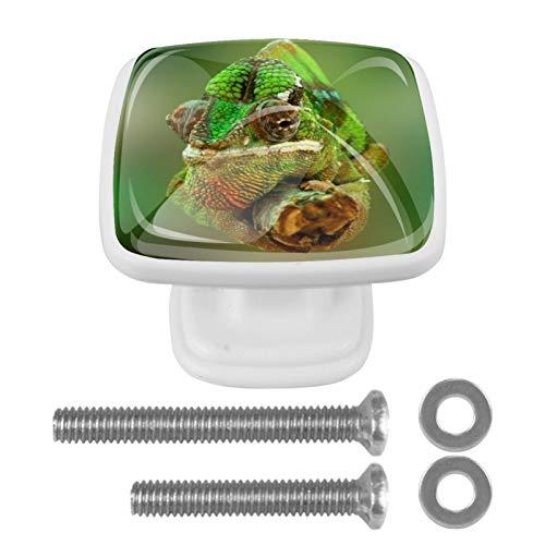[4 piezas] Tiradores de cajón de cristal transparente con tornillos para cocina, aparador, armario, baño, armario, camaleón, reptil lagarto, verde