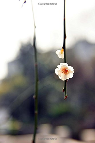 Wintersweet (Chimonanthus praecox) in Bloom Flowering Plant Journal: 150 Page Lined Notebook/Diary