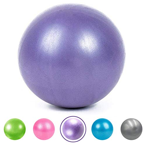 XIECCX Mini Yoga Balls 9 Exercise Ball Pilates Ball Therapy Ball Balance Ball Bender Ball Barre Equipment for Home Stability Squishy Training PhysicalCore Training with Inflatable Straw Purple