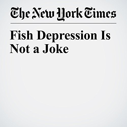 Fish Depression Is Not a Joke copertina