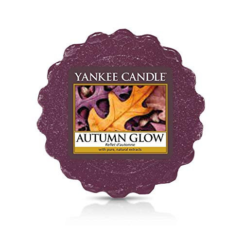 Yankee Kaars Herfst Glow Wax Smelt, Paars, 6 x 5,7 x 2 cm