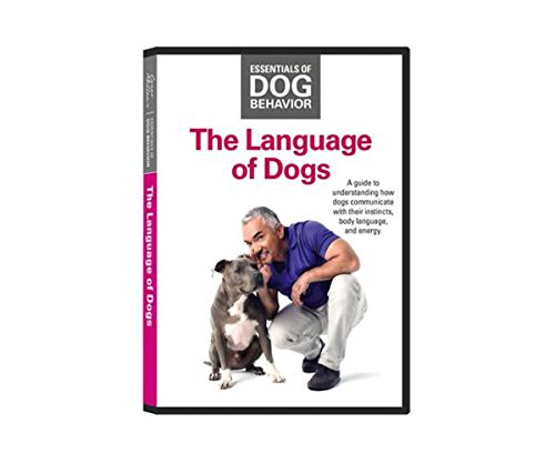 The Language of Dogs Sprache der Hunde Cesar Millan Grundlagen der Hundeerziehung Essentials of Dog Behavior Hundeflüsterer