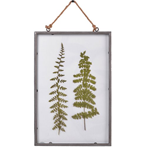 NIKKY HOME 10' x 15' Vintage Metal Framed Fern Botanical Glass Wall Art Print with Rope