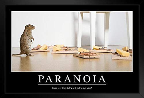 Paranoia Funny Demotivations-Poster, 30,5 x 45,7 cm 14x20 inches Framed Poster