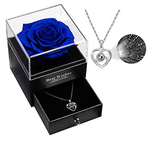 Preserved Rose with Love You Necklace 100 Languages Necklace Gift Set, Enchanted Handmade Real Rose Eternal Preserved Rose Flower for Girlfriend Wife on Valentine's Day, Birthday, Mother's Day (Blue)