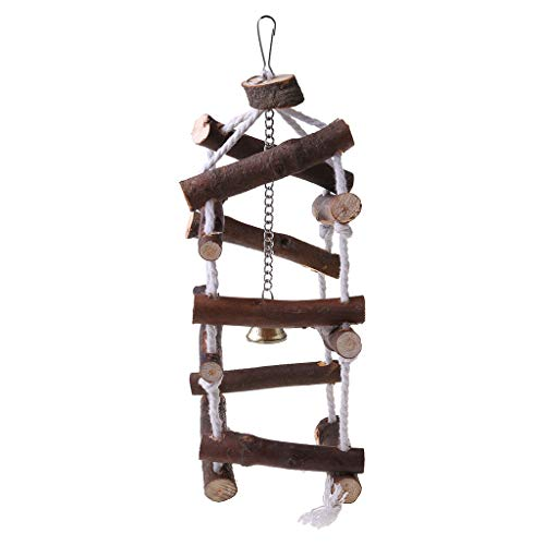Vdn Djvn - Juguete para loro, madera, metal, loro, pájaro, columpio, escalera, puente suspendido, columpio, juguetes con campanas, 10 x 30 cm, madera, color