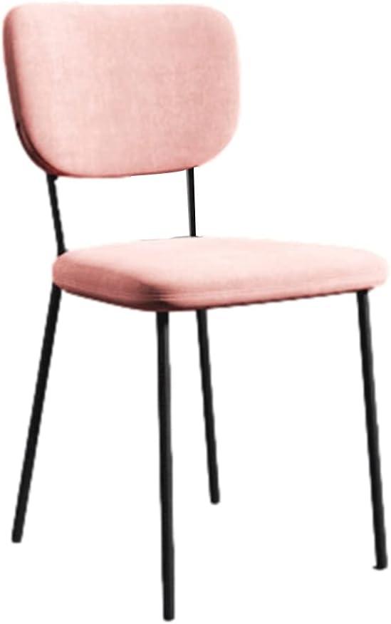 WRNM San Francisco Mall Nordic Dining Chair Leisure Household Furniture Ligh Modern Brand Cheap Sale Venue