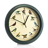 Mark Feldstein & Associates Original Singing Bird Wall/Desk Clock, 8 Inch