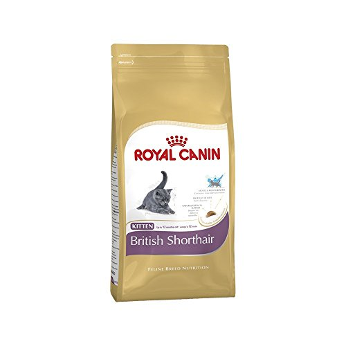 Royal Canin Cat Royal Canin Feline Kitten British Shorthair 400g
