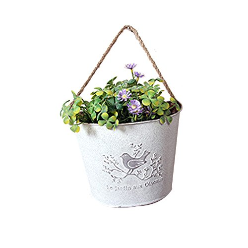 Watering Honey French Country Rustic White Shabby Chic Mini Metal Wall Hanging Planters