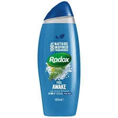 Radox For Men 2 in 1 Shower Gel And Shampoo 250ml