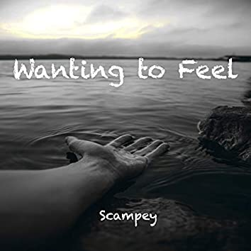 Wanting To Feel