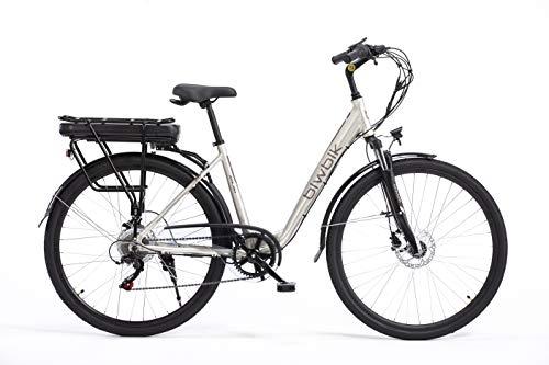Bicicletta elettrica Biwbike Malmo