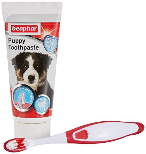 Beaphar Kit dental para cachorros