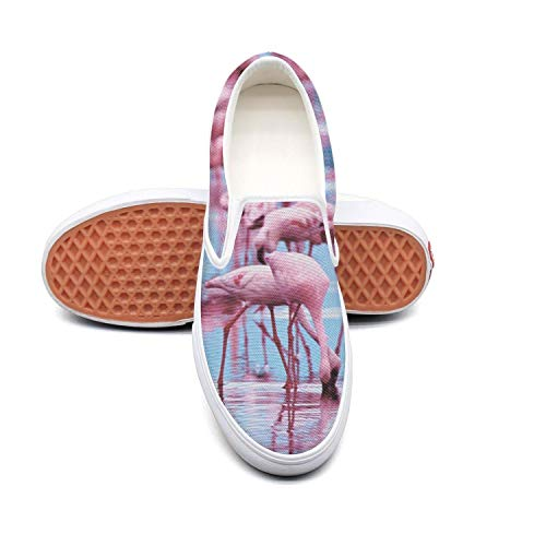 Vosda Man's Flamingos in Water Walking Shoes for Mens News Best Running Shoes