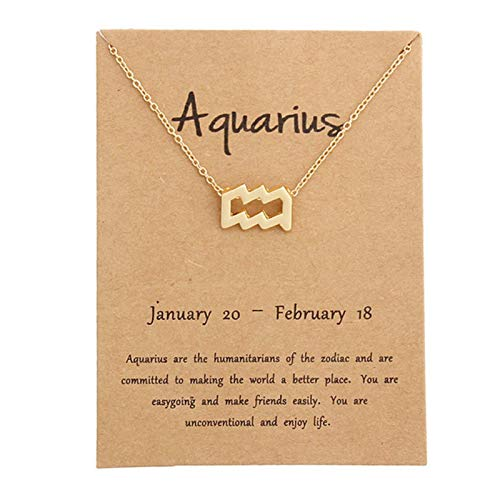 12 Constellation Pendant Necklaces Necklace Birthday Gifts Message Card for Women Girl Jewelry