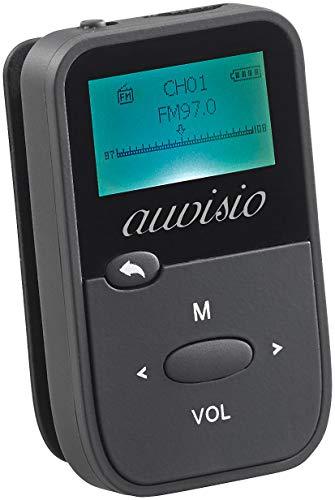 auvisio Sprachrecorder: 2in1-Audio-Player & Sprachrekorder, MP3/WMA/WAV, LCD-Display, microSD (Voice Recorder)