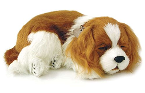 Perfect Petzzz Cavalier King Charles cachorro que respira the Breathing Puppy