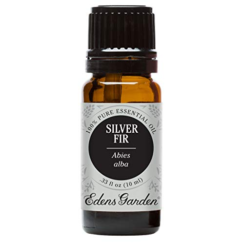Edens Garden Silver Fir Essential Oil, 100% Pure Therapeutic Grade (Headaches & Weight Loss) 10 ml