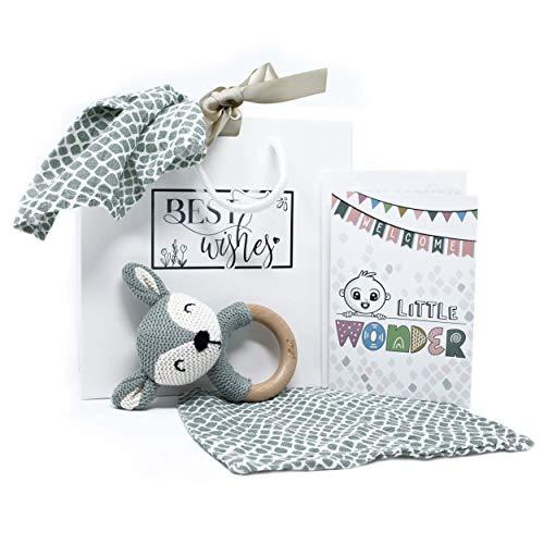Geschenkset Baby zur Geburt - Set mit Karte Tasche Beißring Rassel Spucktuch Waschlappen 100% Baumwolle | Hochwertige Jollein Produkte enthalten | Glückwunschkarte & Geschenktasche (Grün Beißring)