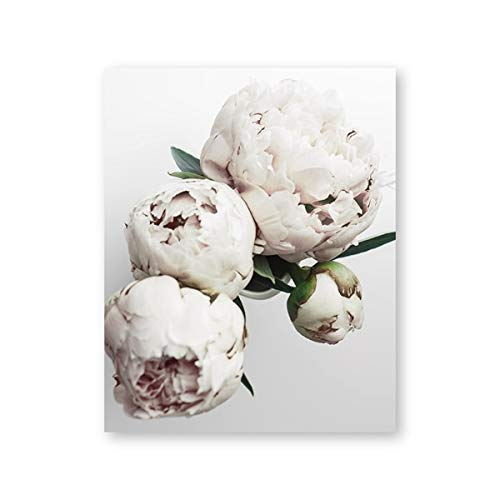 White Peony Flower Wall Art Canvas Print y Poster Floral Canvas Painting Picture Photo Living Room Decoración minimalista moderna 40X60CM SIN marco