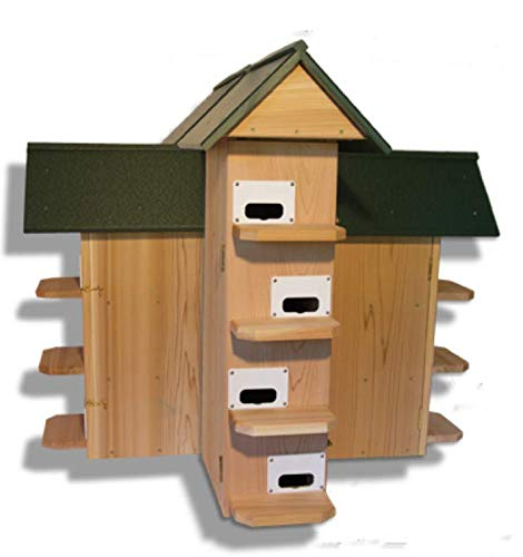 FMS Ravenox T-14 Purple Martin Bird House | Purple Martin Bird Houses | (Conley II Entrance)(Green Poly Roof)