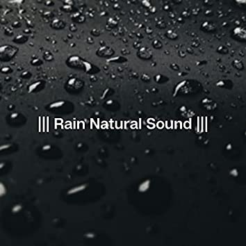 Rain Natural Sound