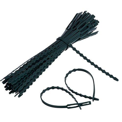 Willbond 50 Packung Verstellbare Pflanze Kabelbinder Krawatte und Stütze, 170 mm x 8 mm Dunkelgrün