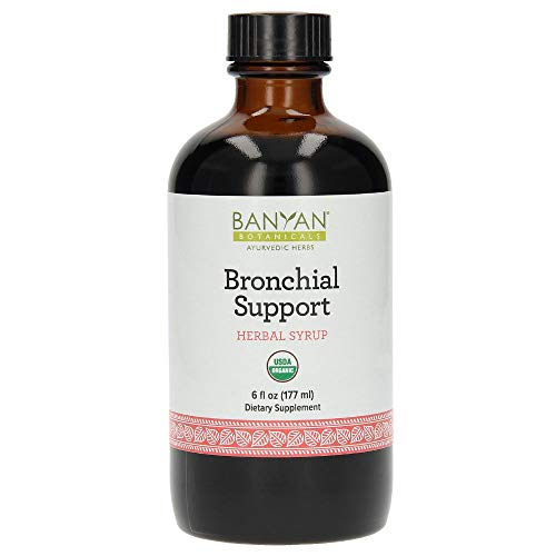 Banyan Botanicals Bronchial Support – Organic Herbal Syrup for Children & Adults – Soothing & Comforting, Supports a Healthy Respiratory System* – 6oz. – Non GMO Sustainably Sourced Vegetarian