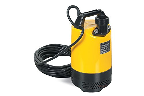 PS2 500 Single Phase Submersible Pump 110V/60Hz 2/3HP, 6.1A