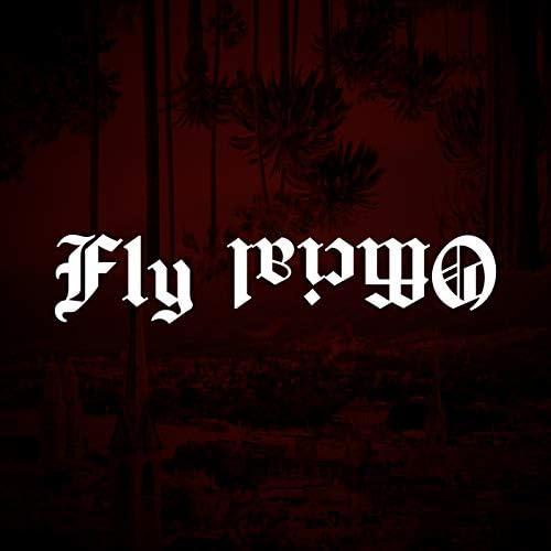 Kev Fly