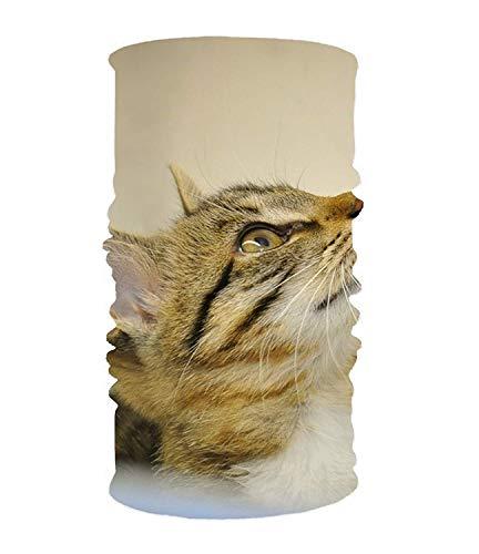 dingjiakemao Stylish Cat Baby Profile Animal Shelter UV Headband Quick Dry Ultra Soft Elastic Handscarf Microfiber Headwear Outdoor Bandana Magic Scarf Face Mask Unisex