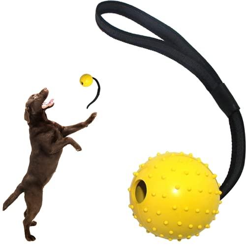 Lanzador de Pelotas para Perros Cachorros y Grandes - Juguete Lanza Pelota frisfee Interactivo