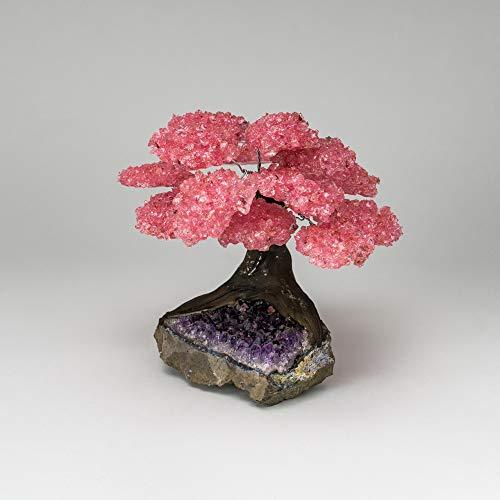 Large - Genuine Rose Quartz Clustered Gemstone Tree on Amethyst Matrix (The Love Tree)