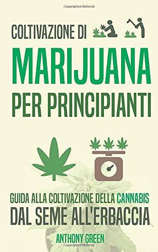 Coltivazione di marijuana per principianti: Guida alla coltivazione della cannabis - Dal seme all'erba