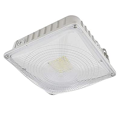 LEDwholesalers Outdoor LED Canopy Ceiling Light Fixture 35-Watt, 3921