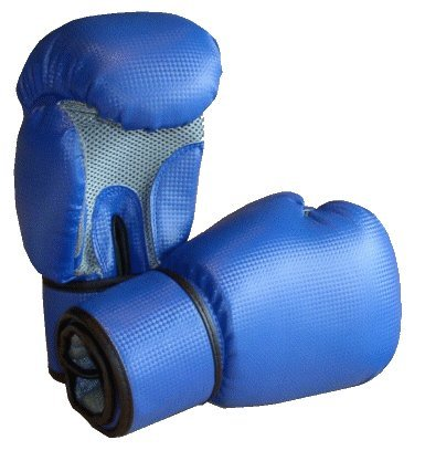 S.B.J - Sportland Allround Boxhandschuhe Carbon Optik, blau, 12 OZ | Boxsack Kickboxen Pro Sparring Sandsack Punchinghandschuhe Mitts Boxing Gloves Muay Thai Training